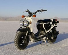 Honda Ruckus... My primary mode of travel for nearly five years.