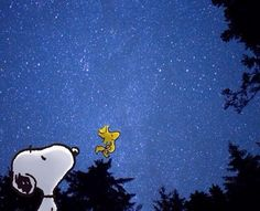 Star Gazing with Snoopy and Woodstock.