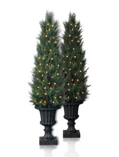 Balsam Hill offers premium, best looking, top quality Baby Cypress Topiary Trees from the Classics Collection