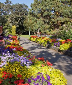 Beacon Hill Park in Victoria, BC