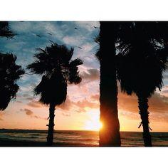 """Autumn is for sunrises #sun #sunrise #mornings #sea #waves #swell #sky #cambrils #mediterráneo #backinthehood #light #birdsformykids #mediterraneansurf…"""