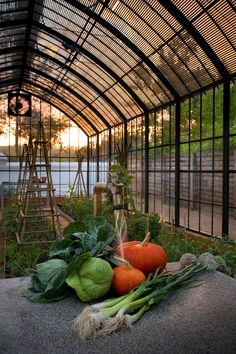View full picture gallery of Babylonstoren Greenhouse Restaurant, Backyard Greenhouse, Vegetable Farming, Vegetable Garden, South Africa Safari, Picnic Style, Open Market, Earthship, Garden Structures