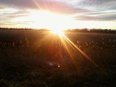 Nature Writing - Sunrise on the Stour