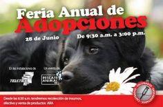 Feria Anual de Adopciones http://www.desktopcostarica.com/eventos/2013/feria-anual-de-adopciones