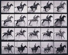 Eadweard Muybridge pioneered work in photographic studies of motion.