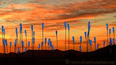 Burning Man art   That Creative Feeling by Dina Goebel