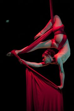 My favorite cirque act is always the aerial contortions in silk...I'd LOVE to have this or the aerial pas de deux at my Cirque inspired wedding.