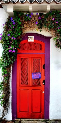 Stunning door with Morning glories growing above in Paraty, Rio de Janeiro, Brazil.