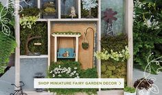 Shop Miniature Fairy Garden Decor.