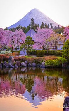 Science Discover Que maravilha ! Beautiful World, Beautiful Places, Wonderful Places, Cool Pictures, Beautiful Pictures, Nature Pictures, Monte Fuji, Amazing Nature, Belle Photo