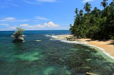 gandoca manzanillo wildlife refuge manzanillo point   - Costa Rica