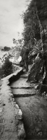 Inca Trail at the Mountainside, Machu Picchu, Cusco Region, Peru Photographic Print by Panoramic Images at AllPosters.com