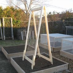 This A Frame Trellis and planter box is great for growing vine type vegetables, like tomatoes and squash, in your back yard!! click on picture to go to web page and read all about it - Linda