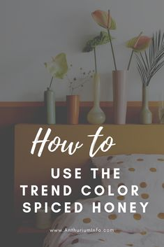 Decorating your home using the Flexa trend color for Spiced Honey Beautiful Flowers Pictures, Flower Pictures, Exotic Flowers, Green Flowers, Decorating Tips, Decorating Your Home, Spring Bouquet, Interior Paint Colors, Spring Is Here