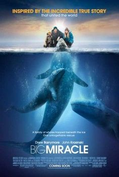 Big Miracle Movie Poster (11 x 17)