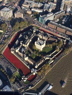 Tower of London, Poppy Installation