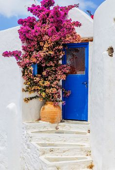 A typical entrance of a House in Amorgos Island, Cyclades, Greece Beautiful Front Doors, Unique Doors, Flowers Nature, Beautiful Flowers, Beautiful Places, Travel Photographie, When One Door Closes, Cool Doors, House Entrance