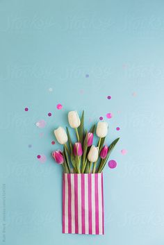 Tulips by Ruth Black for Stocksy United