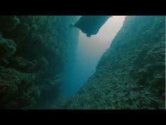 Aqua Lung Oceanwings / The underwater human flight experience