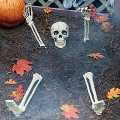 Bury this Ground Breaking Skeleton in front of a tombstone to create a spooky graveyard effect. No tombstone? No problem! Just place this Halloween decoration in the ground and he'll look like he's emerging from his unmarked grave.