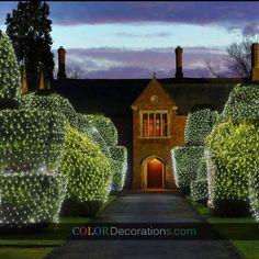 CD-LD115 Polished Net LED Lights Christmas/ Wedding/ Holiday Decorations - Wholesale & OEM