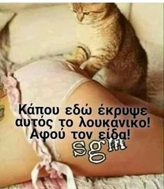 Funny Greek, Greek Quotes, Motto, Jokes, Lol, Humor, Sayings, Pets, Animals
