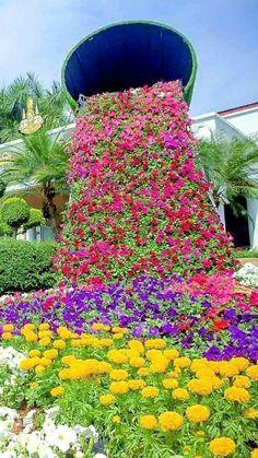 Bellezas de la naturaleza Beautiful Flowers Garden, Unique Flowers, Exotic Flowers, Amazing Flowers, Front Garden Landscape, Lawn And Garden, Garden Art, Garden Design, Garden Deco