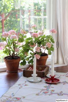 Rose Cottage, Cottage Style, My Flower, Flower Pots, Pink Geranium, Estilo Country, Red Geraniums, Pink Houses, Flowers Nature