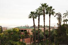 Marrakech City Guide | More on viennawedekind.com #marrakech
