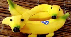 Food Art Banana dog