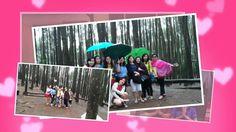 Wisata Hutan Pinus Mangunan Jogja Yogyakarta GLORYDUO TOUR TRAVEL 081328...