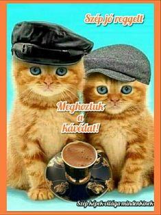Osztva Animals And Pets, Good Morning, Lunch Box, Cute Pets, Animales, Pets, Buen Dia, Bonjour, Bento Box