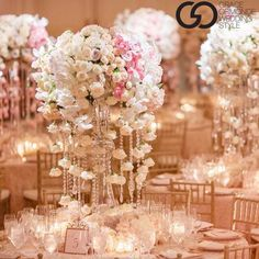 Wedding/Event Planner SoCal, Fashion lover, Shoe addict, Colored purses, Beauty product junkie, Foodie minus avocados. Pictures posted are our events.