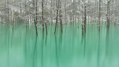 The Blue Pond in Hokkaido Changes Colors Depending on the Weather | Spoon & Tamago