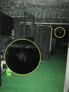 ghost news face monk The Village Mansfield Notts Scary Ghost Pictures, Creepy Ghost, Creepy Monster, Creepy Pictures, Real Ghost Photos, Ghost News, Images Terrifiantes, Paranormal Pictures, Ghost Caught On Camera