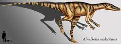 Meet the First True Dinosaurs of the Mesozoic Era: Alwalkeria