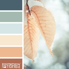 These colors make me think of a cloudy day at the beach.