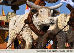 These cattle on a parade float are completely covered with natural materials such as beans, onions and garlic. Fruitcorso Tiel, Netherlands (2009)