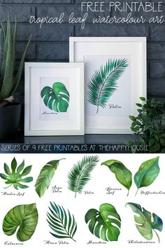 diy home Tropical Leaf Free Printable Art -Series of 9 Leaf Printables, Printable Leaves, Free Printable Art, Free Printables, Tropical Home Decor, Tropical Interior, Art Series, Leaf Art, Leaf Wall Art
