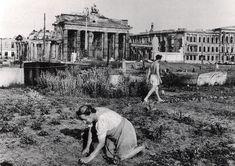 Berlin | 1933-45+ Brandenburger Tor. Sommer Gemüsegarten in der Nähe des Brandenburger Tor, 1947