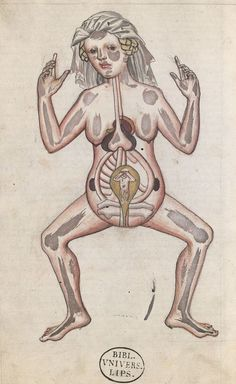 Medical illustration of a pregnant woman in a manuscript dating from around 1450.