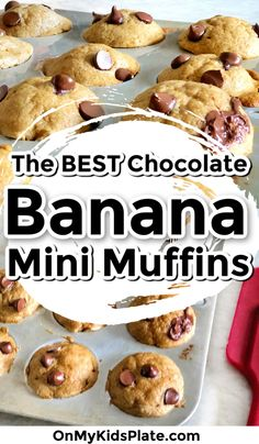 Mini Banana Muffins Recipe: extra moist with applesauce for a healthy treat on busy mornings. The recipe makes a fun bite-sized snack that is perfect for a party, playdate or as a treat for your kid's lunchbox. #onmykidsplate #minimuffins #muffinrecipe #bestmuffins #easyrecipe #easymuffins #bananamuffins #bananabread #kidssnack #kidsdessert #lunchboxideas #breakfastideas Mini Banana Muffins, Applesauce Muffins, Mini Bananas, Banana Chocolate Chip Muffins, Chocolate Chips, Breakfast For Kids, Breakfast Ideas, Brunch Ideas For A Crowd, Kid Desserts