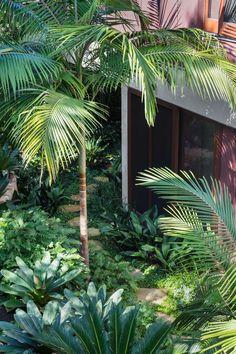 Palm Garden, Tropical Garden Design, Tropical Backyard, Tropical Landscaping, Modern Landscaping, Backyard Landscaping, Garden Design Plans, Garden Landscape Design, Rainforest Plants