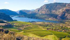 British Columbia Wine Country--Explore!