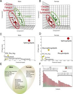Chronic fatigue syndrome is a multisystem disease that causes long-term pain and disability. Metabolomics showed that chronic fatigue syndrome is a highly concerted hypometabolic response to environmental stress that traces to mitochondria and was similar to the classically studied developmental state of dauer.