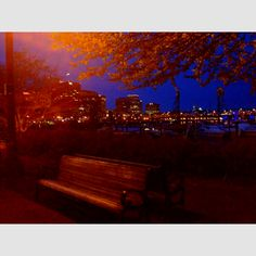 Portland waterfront at night Portland Oregon, Outdoor Furniture, Outdoor Decor, Life Is Beautiful, Places To See, Night Out, City, Life Is Good, City Drawing