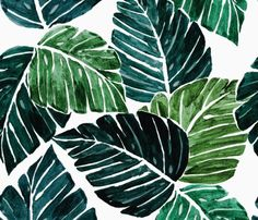 Rmonstera_leaves_shop_preview