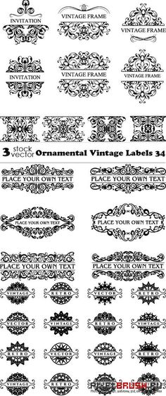 Vectors - Ornamental Vintage Labels 34
