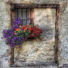 Beauty by the window Old Windows, Windows And Doors, Ventana Windows, Flower Window, Cool Doors, Window View, Window Dressings, Through The Window, Stone Houses
