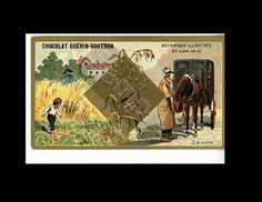 Antique original Victorian collectors trade card Chocolat Guerin Boutron Botanical Illustration Collectible Cards, The Collector, Victorian, The Originals, Antiques, Illustration, Originals, Chocolates, Antiquities